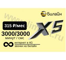 Билайн тариф х5 за 310